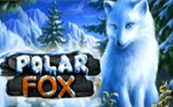 Polar Fox game